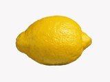 A Lemon Photographic Print by Bodo A. Schieren