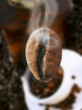 Roasted Coffee Bean (Steaming) Photographic Print by Dieter Heinemann