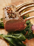 Rack of Lamb with Sichuan Pepper on Fried Sage Fotografie-Druck