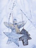 Stars and Silver Angel on Snowy Branch Stampa fotografica