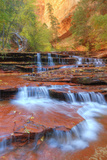 Subway Cascades and Approach at Zion Photographic Print by Vincent James