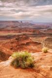 Beautiful Dead Horse Point Fotografie-Druck von Vincent James