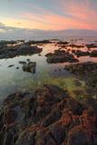 Sunrise Lava Pools at Poipu Fotografisk trykk av Vincent James