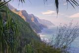 Framed Coast, Kauai Photographic Print by Vincent James