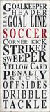Soccer Goalkeeper Prints