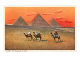 Giza Pyramid at Sunset, Egypt Prints
