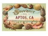 Souvenir from Aptos, California Lámina giclée prémium