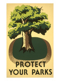 Protect Your Parks, Stately Tree Poster