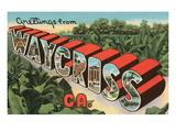 Greetings from Waycross, Georgia Prints