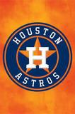 Houston Astros Logo Baseball Poster Prints