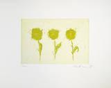 Drei kleine Gelbe (2001) Limitierte Auflage von Josef Hirthammer