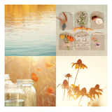 Nature's Elements Posters by Mandy Lynne