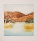Birch Marsh Limited Edition by Harvey Kidder