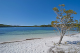 Mckenzie Lake, Fraser Island, UNESCO World Heritage Site, Queensland, Australia, Pacific Reproduction photographique par Michael Runkel