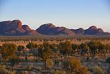 The Olgas (Kata Tjuta), Uluru-Kata Tjuta Nat'l Park, UNESCO Site, Northern Territory, Australia Fotografisk trykk av Michael Runkel