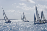Sailboat Regattas. British Virgin Islands, West Indies, Caribbean, Central America Reproduction photographique par J P De Manne