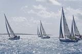 Sailboat Regattas. British Virgin Islands, West Indies, Caribbean, Central America Fotografisk tryk af J P De Manne