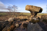 The Druids Writing Desk at Brimham Rocks, Nidderdale, North Yorkshire, England, UK Photographic Print by Mark Sunderland