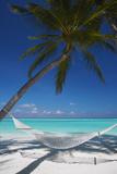 Hammock on Tropical Beach, Maldives, Indian Ocean, Asia Fotoprint av Sakis Papadopoulos