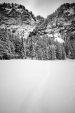 Snow Field Photographic Print by Craig Howarth