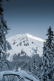 Alpine Trails Photographic Print by Craig Howarth