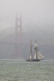 A Two Masted Schooner Sails under the Golden Gate Bridge Photographic Print by Skip Brown