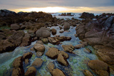 Tide Pools at Sunset in Monterey, California Photographic Print by Ben Horton