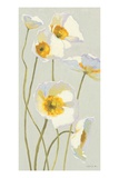 White on White Poppies Panel I Premium Giclee Print by Shirley Novak