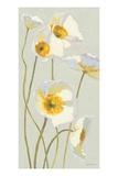 White on White Poppies Panel I プレミアムジクレープリント : シャーリー・ノヴァク