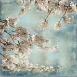 Aqua Blossoms II Posters af John Seba