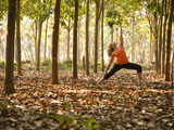 Yoga Practice Among a Rubber Tree Plantation in Chiang Dao, Thaialand Fotoprint van Dan Holz