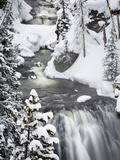 Kepler Cascades in Winter Impressão fotográfica por Mike Cavaroc