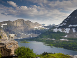 Mountain View and Hidden Lake Along Hidden Lake Trail, Glacier National Park, Montana Impressão fotográfica por Ian Shive