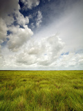 Mad Island Marsh Preserve, Texas: Landscape of the Marsh's Coastal Plains Near Sunset. Photographic Print by Ian Shive