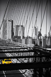 Taxi Cabs - Brooklyn Bridge - Yellow Cabs - Manhattan - New York City - United States Impressão fotográfica premium por Philippe Hugonnard