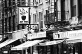 Advertising - La Mela - Little Italy - Manhattan - New York - United States Stretched Canvas Print by Philippe Hugonnard