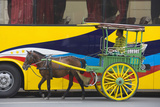 Horse Cart Walk by Colorfully Painted Bus, Manila, Philippines Fotografisk tryk af Keren Su