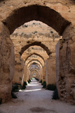 Royal Granaries of Moulay Ismail, Meknes, Morocco, Africa Reproduction photographique par Kymri Wilt