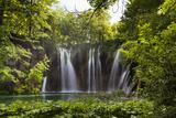 Upper Lakes, Ponds and Waterfalls, Plitvice Lakes, Plitvicka Jezera, Croatia Fotografisk trykk av Martin Zwick