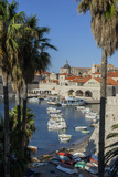Boats in Harbor, Dubrovnik, Croatia, Europe Photographic Print by Jim Engelbrecht