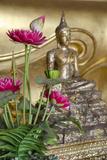 Lotus Flowers, Golden Buddha Statue, Phra Mongkonbophit, Ayutthaya, Thailand Fotografisk tryk af Cindy Miller Hopkins