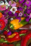 Fresh Organic Vegetables at a Farmers' Market, Savannah, Georgia, USA Fotoprint van Joanne Wells