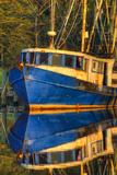 Shrimp Boat Docked at Harbor, Fishing, Apalachicola, Florida, USA Fotografisk tryk af Joanne Wells