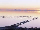 Spiral Jetty Above Great Salt Lake, Utah, USA Photographic Print by Scott T. Smith