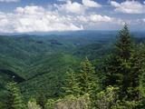 Pisgah National Forest, North Carolina, USA Fotografisk trykk av Adam Jones