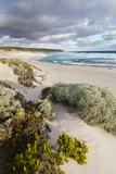 Beach, Hanson Bay, Kangaroo Island, Australia Fotografie-Druck von Martin Zwick