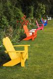 Garden Bench, Schreiner's Iris Gardens, Keizer, Oregon, USA Photographic Print by Rick A. Brown