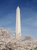 View of Washington Monument, Washington DC, USA Photographic Print by Michele Molinari
