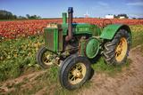 Old John Deere, Wooden Shoe Tulip Farm, Woodburn, Oregon, USA Valokuvavedos tekijänä Rick A. Brown