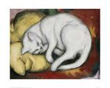 The White Cat Giclée-tryk af Franz Marc